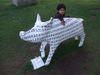 Pig101