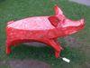 Pig41