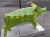 Pig61