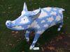 Pig71