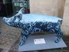 Pig12