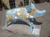 Pig66