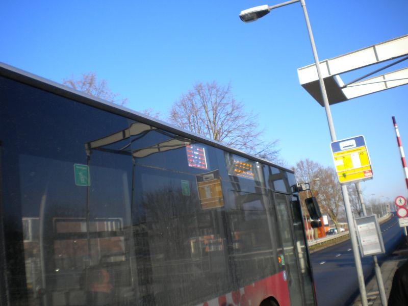 Nieuwjaarbus